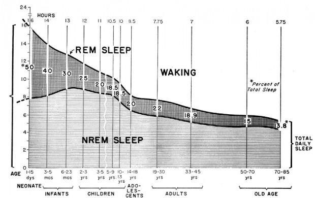 rem-sleep